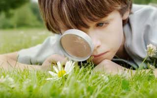 Детское экологическое воспитание