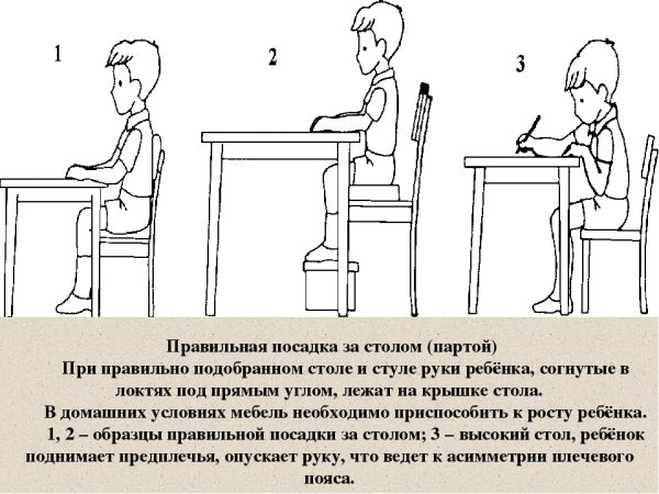 как правильно сидеть за столом
